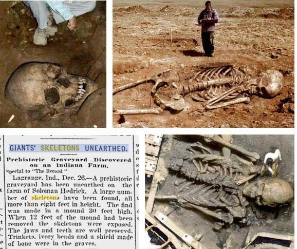 Bible Giants Earth Walked