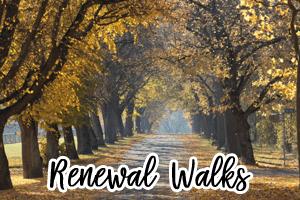 renewalwalks