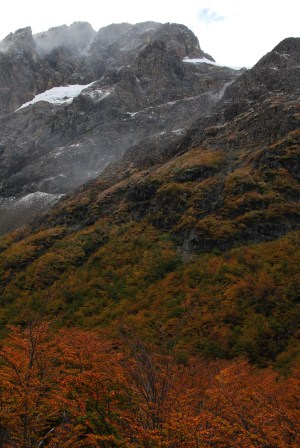 Fall colors in the Andes near El Bolson