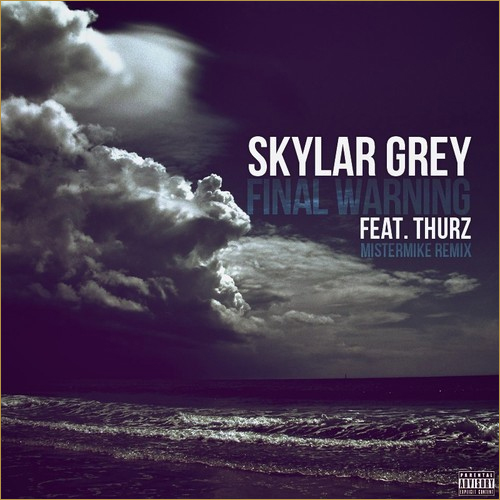 skylar grey final warning