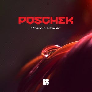 POSCHEK - COSMIC FLOWER 1400X1400