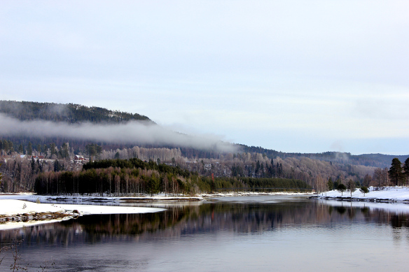 Hågestaön i Sollefteå