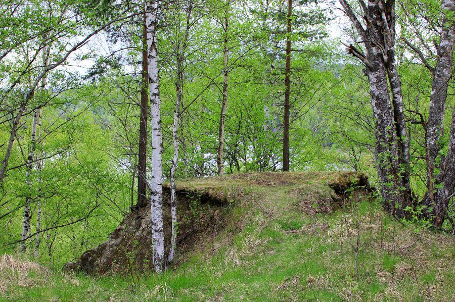 På toppen av Bruksnipan i Sollefteå
