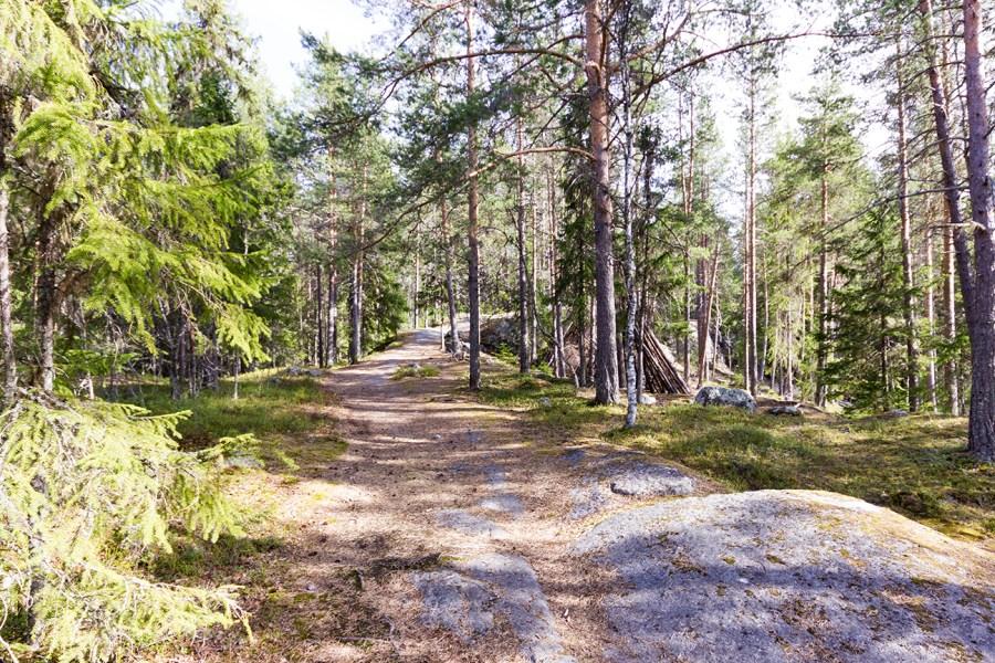 Stigen upp till Tomashällan i Sollefteå