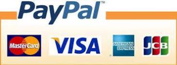 paypal 付款