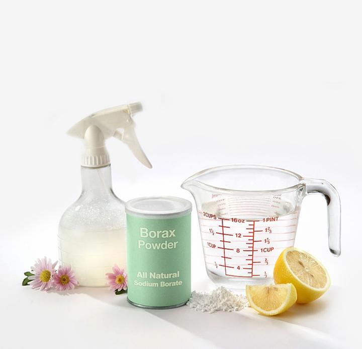 Water And Borax (Gentle Detergent)