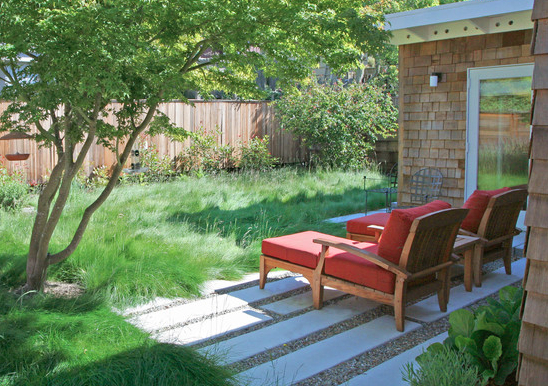 Landscaping with wild grass saves