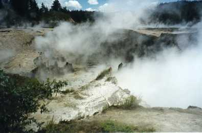 Craters of the Moon, Taupo, North Island, New Zealand - taken by Sue Ellam, London, UK