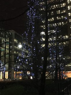 Christmas lights in Canary Wharf, London, by Peter Thompson