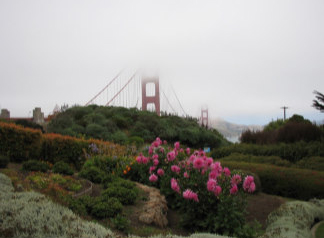 Golden Gate Bridge, San Francisco taken by Sue Ellam, London, UK