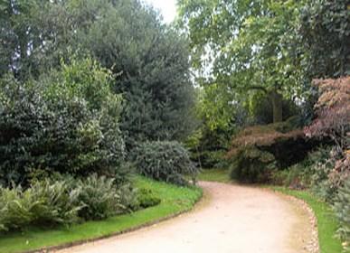 London park taken by Sue Ellam, UK