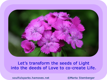 """""""Let's transform the seeds of Light into the deeds of Love to co-create Life."""""""