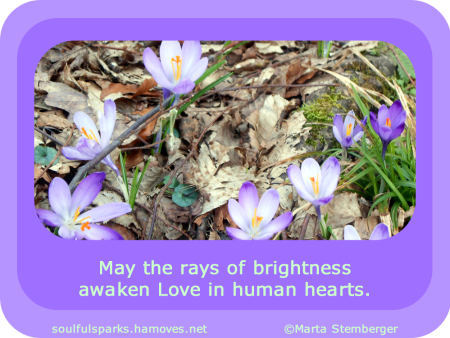 """May the rays of brightness awaken Love in human hearts."" ~ Soulful Wizardess"