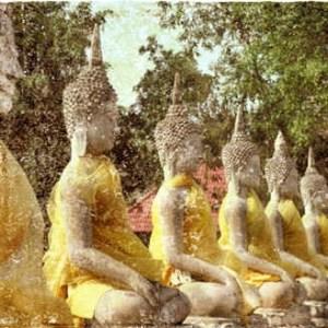 Buddhas-meditation-121212