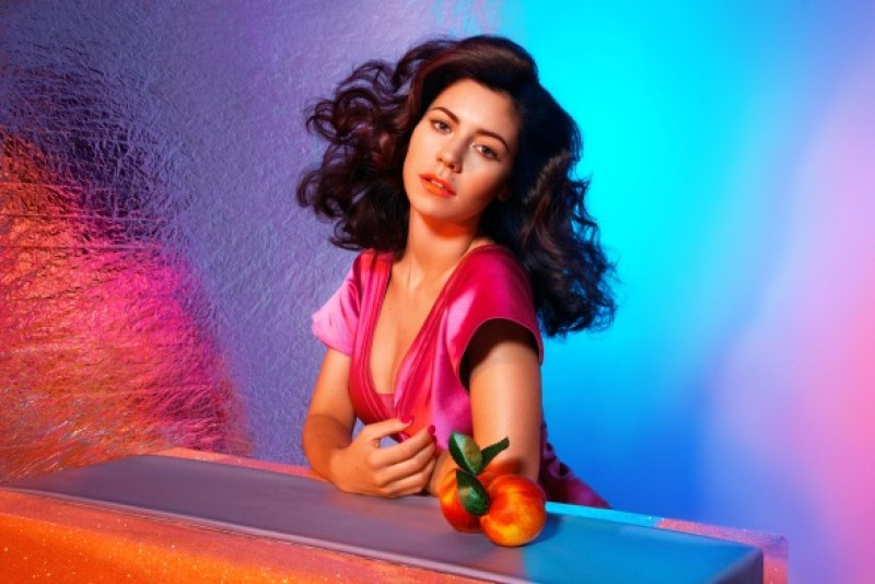 Marina_And_The_Diamonds_Froot_Artwork newsletter