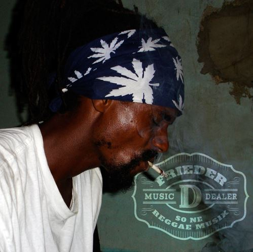 so ne reggae musik