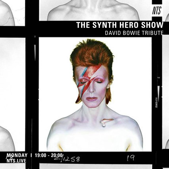 David Bowie Synth Oddities Tribute by Tim Noakes