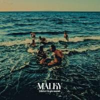 Album-Tipp: Malky – Where is Piemont // full stream