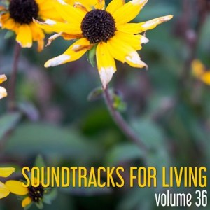 Soundtracks for Living - Volume 36 (Mixtape)