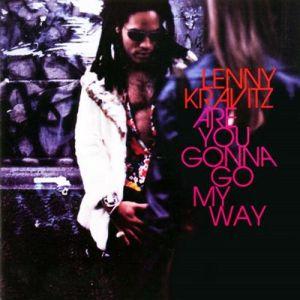 Tribute to Lenny Kravitz (Mixtape)