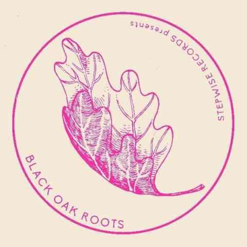Black Oak Roots presents: Raw Dubs Vol. 2 | Basement Treasures