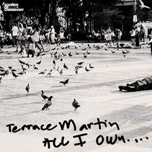 Terrace Martin - All I Own ... (Video)