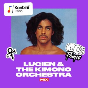 100% PRINCE: instrumentals, accapelas & skits Mix by w/ Lucien & The Kimono Orchestra