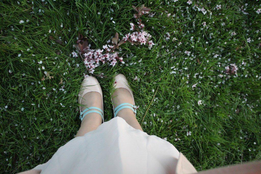 Le temps des cerisiers_souliervertblog (4)