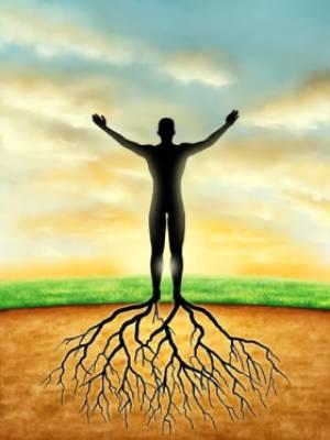 Foundational_Body_Energy_Lower_Abdomen