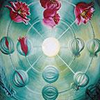 Poppy Energizing Art