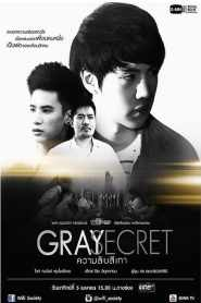 Wifi Society: Gray Secret
