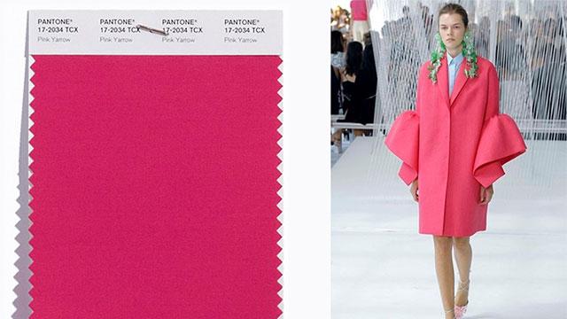 Cor-tendência-Pink-Yarrow-(1)