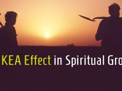 Reflection on The IKEA Effect In Faith