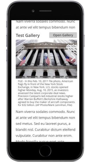 GalleryEmbed-SmallScreen