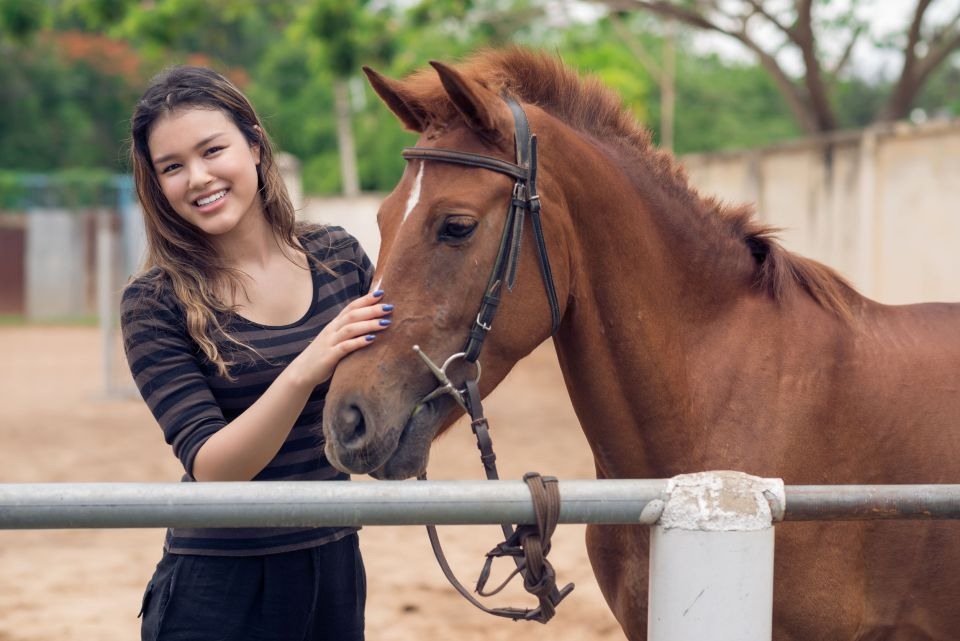 73114648 - happy girl stroking bay pony at the ranch