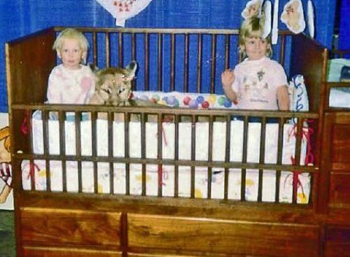 Bad-Family-Photos-Mountain-Lion-Crib