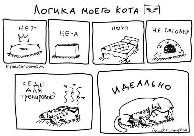комиксы-про-отношения-кошек-и-людей-2