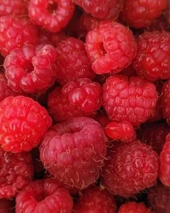 close up of a bunch of raspberries