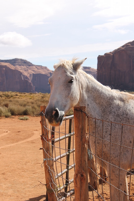 roadtrip_westcoast_usa_monument_valley_soulsistermeetsfriends_native_american_horse