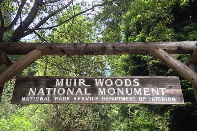 roadtrip_westcoast_muir_woods_national_monument_soulsistermeetsfriends