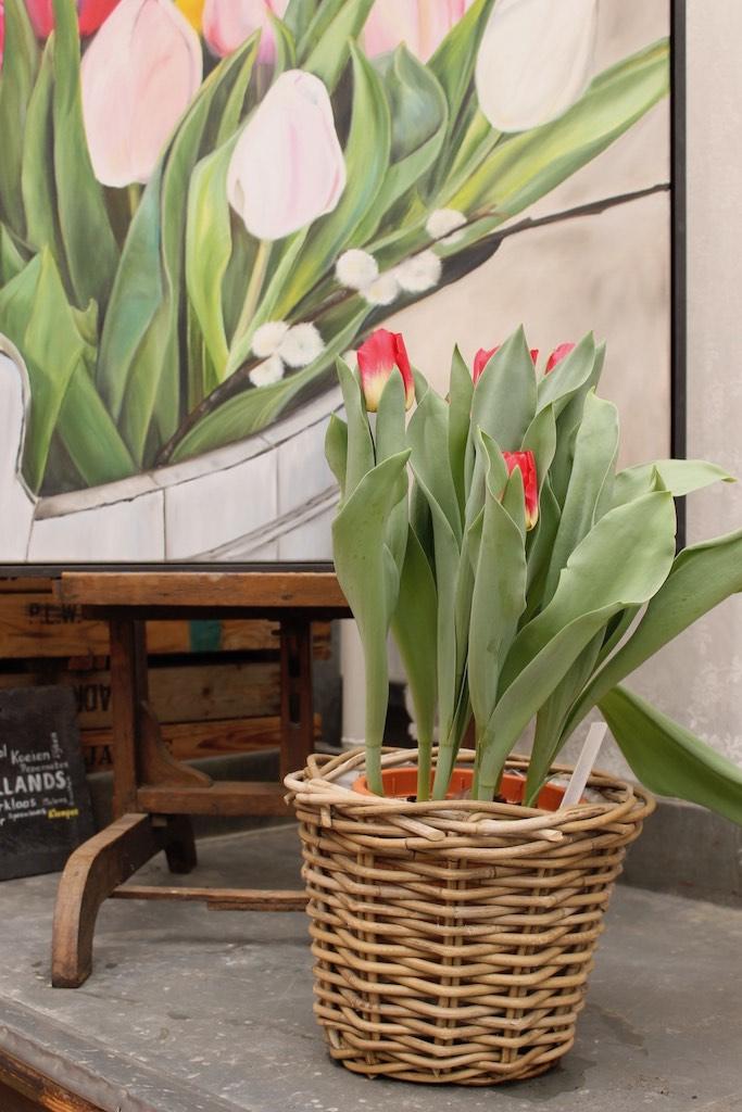 10 tolle Ideen für Tulpen: drinnen & draussen!