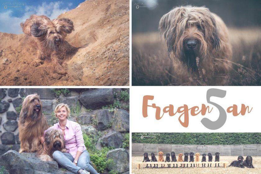 Das Interview auf soulsister meets friends: Jutta Stegers – Hundefotografin.