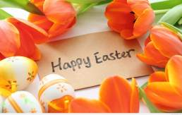 6920868-happy-easter-wallpaper1
