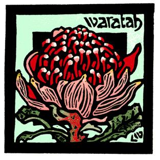 83. Waratah 02 - Linocut