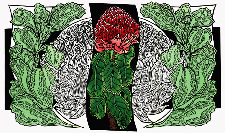 Waratahs - Pale green Watercolour 1