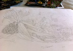 Seaside Wildflowers Drawing 4