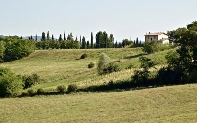 Away from the Crowds in Rural Tuscany.