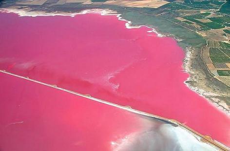 pink lake-retba