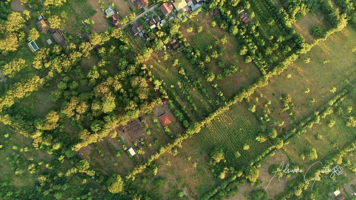 Pemuteran, Bali, sunrise, drone, aerial, green fields