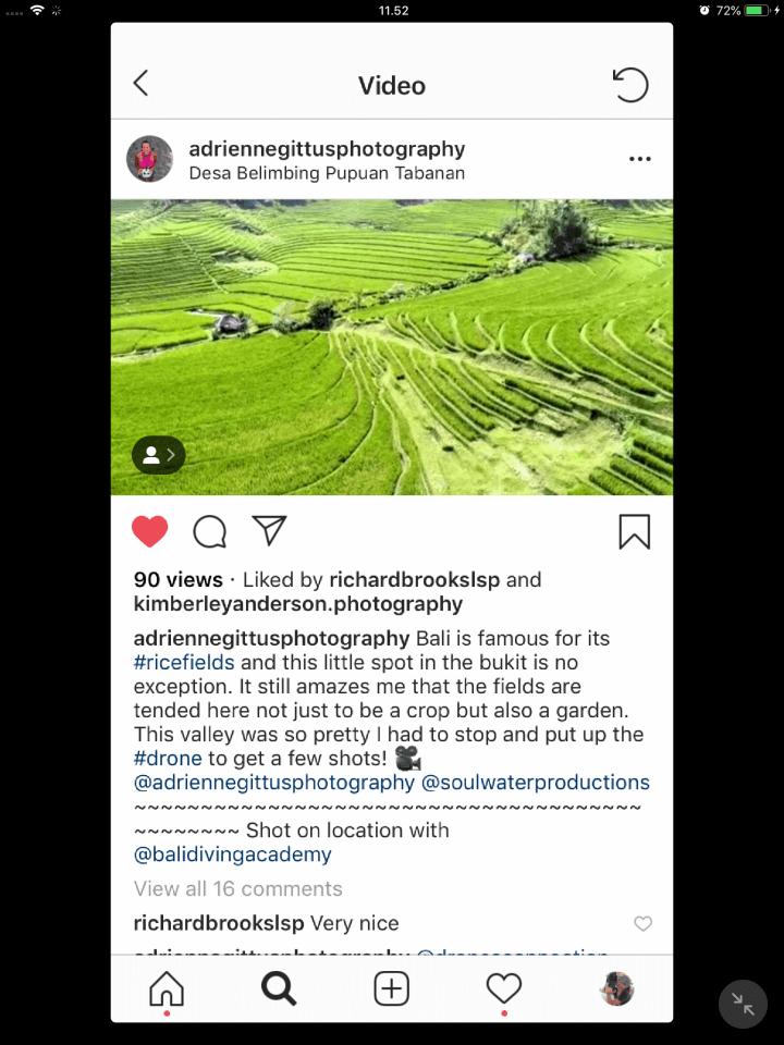 Drone shot of rice fields in Bali